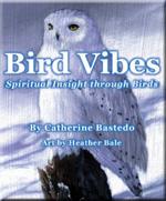 Cover2-birdVibes150