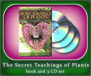 Cover-set-Secret_Teach150