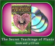Cover-set-Secret_Teach150
