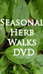 DVD-seasonalherbwalks