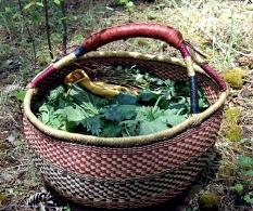 Basket-of-Nettles