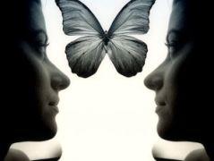 954919_mirror_dream