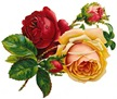 Free-vintage-roses-red-and-yellow-with-buds-thumb