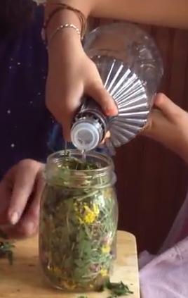 Dandelion-tincture