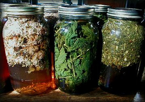 Infusions1c